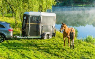Quelle solution choisir pour le transport de chevaux ?