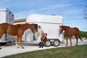 Quel véhicule pour le transport des chevaux ?